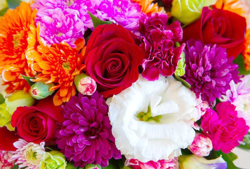 母の日に贈りたい、カーネーション以外の花は?