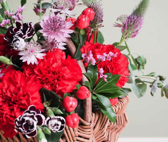 カーネーションの花束・フラワーギフトは洒落たプレゼントの定番